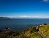 2014-07 New Zealand 0362