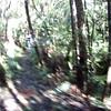 2014-07 New Zealand 0083