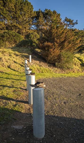 2014-07 New Zealand 0401