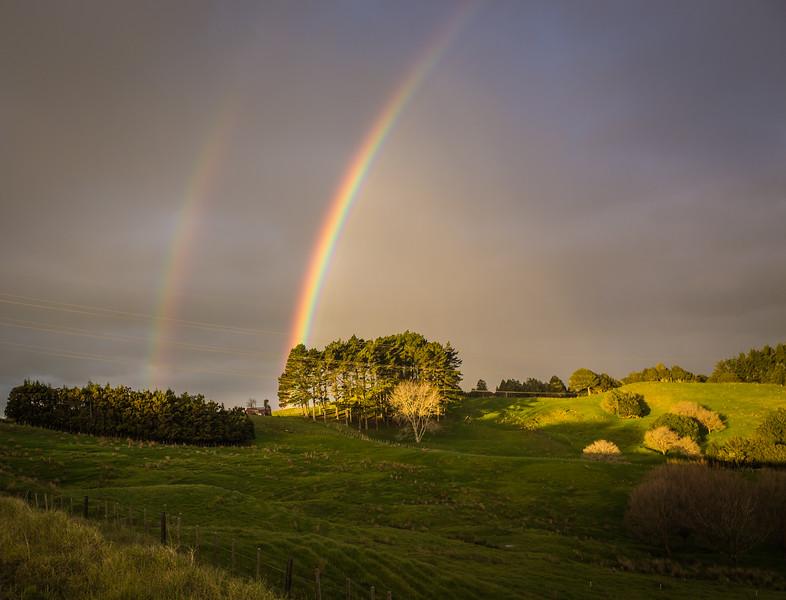 2014-07 New Zealand 0066