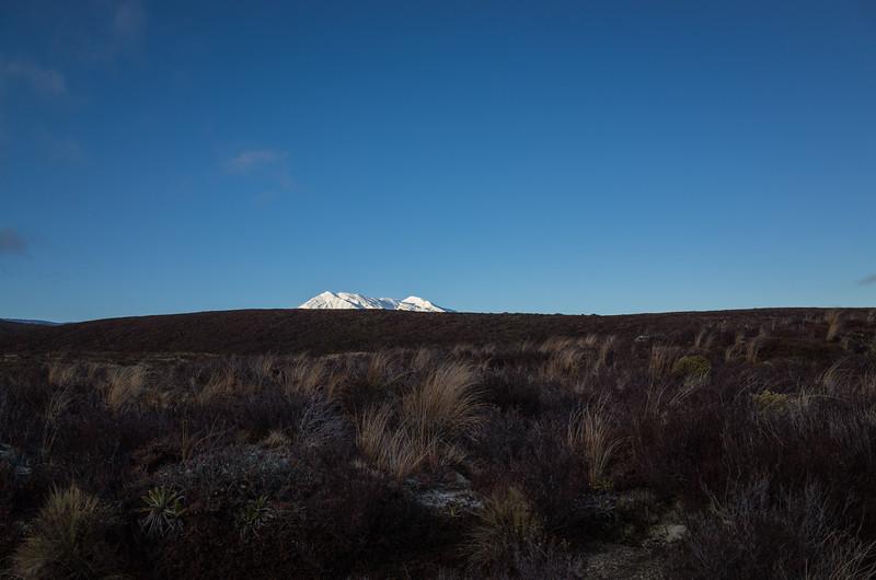 2014-08 New Zealand 0884