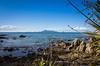 2014-07 New Zealand 0358