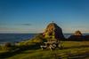 2014-07 New Zealand 0391