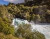 2014-08 New Zealand 1108