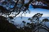 2014-07 New Zealand 0377