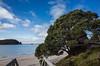 2014-08 New Zealand 0649