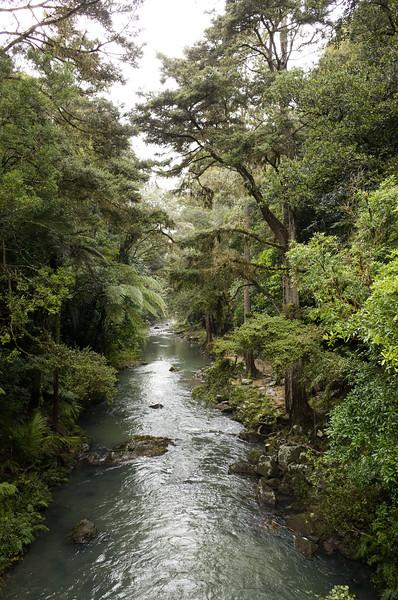 2014-07 New Zealand 0240