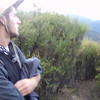 2014-07 New Zealand 0514