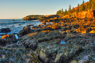 20141009-0704-4276_7_8a_touch_of_hi