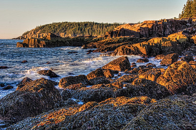 20141009-0706-4303_4_5a_touch_of_hi-Edit