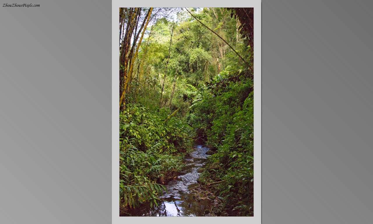 2014_10_15-4 Slideshow (Hawaii)-568