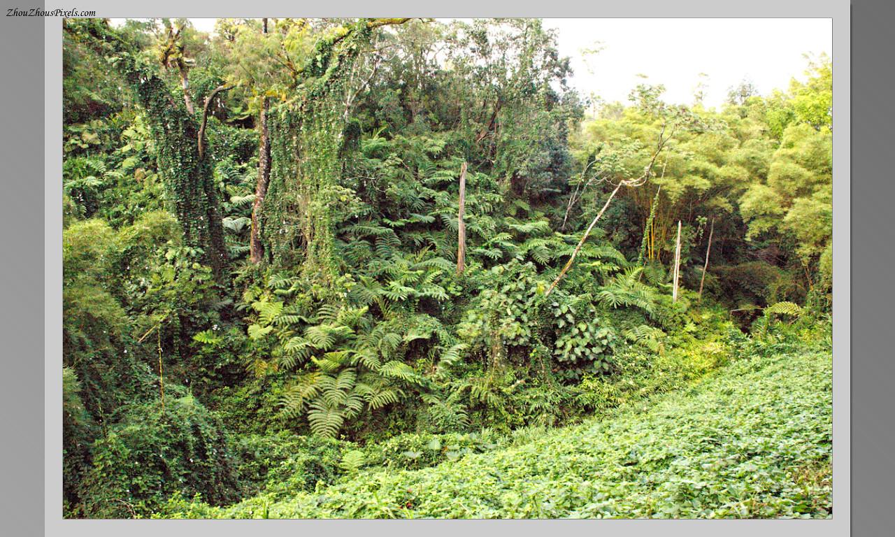 2014_10_15-4 Slideshow (Hawaii)-563