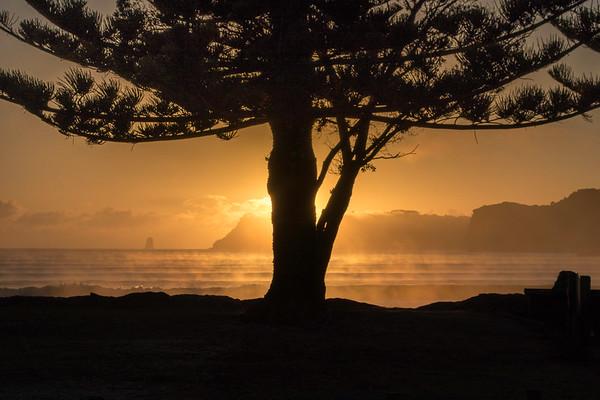 2015 03-40 New Zealand North Island