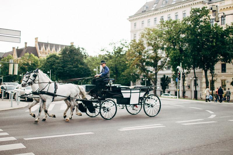 Stadpark, Vienna, May 2015