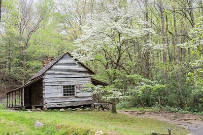 2016/04/22 Roaring Fork Motor Nature Trail