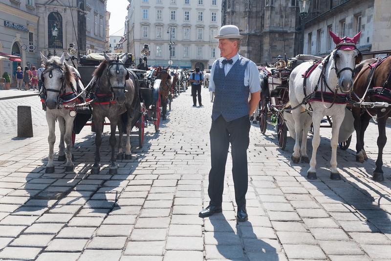 Stephansplatz Carriages<br /> Vienna