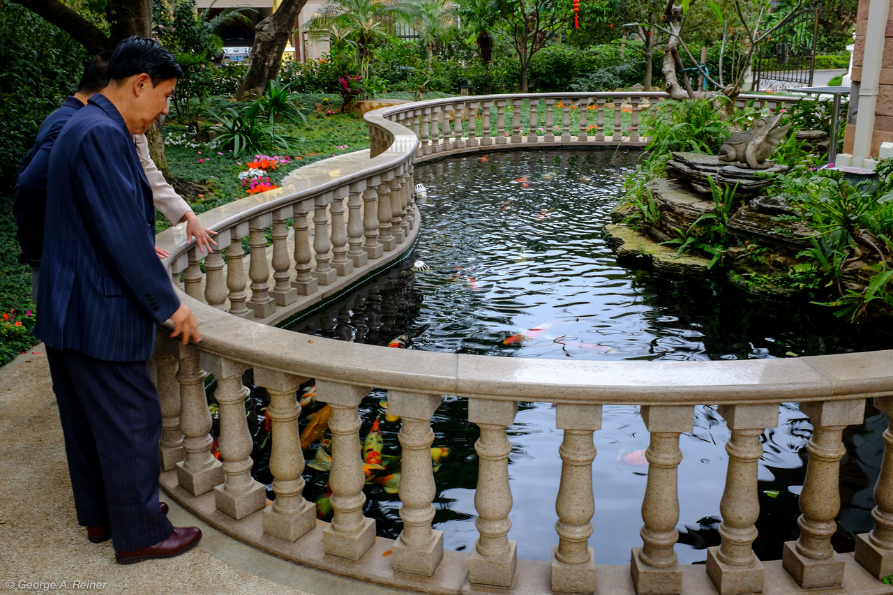 His Koi pond is stocked with maybe 30 fish - each over a foot long and at that size, worth $10K.  (So the value of the fish in this pond is about the value of my home.)
