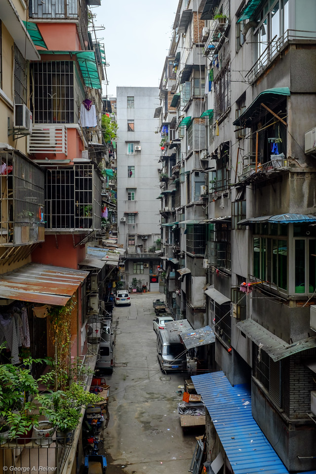 """Mango's neighborhood... you can get an idea of the population density by realizing that every """"caged"""" balcony is another family unit."""