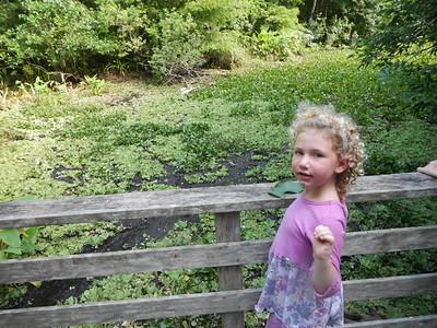 Corkscrew Audubon Trail