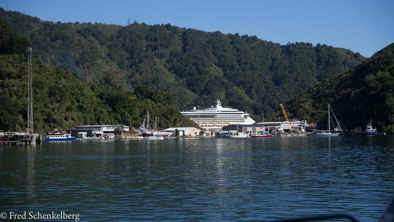 Cruiseship at Picton
