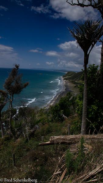 Mangawhai Clifftop Walk view