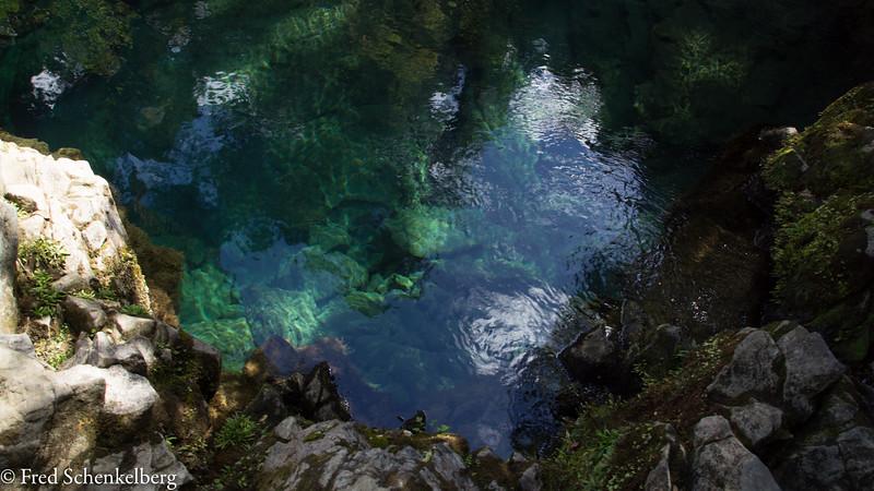 Clear waters at Riwaka Resurgence