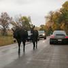Porsches & burros!