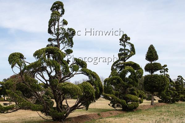 The Pearl Fryar Topiary Garden<br /> <br /> Bishopville, SC