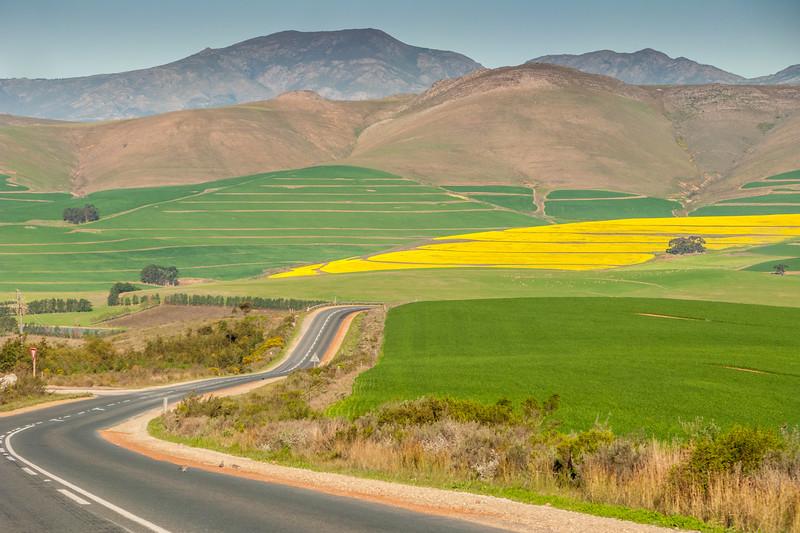 Beautiful drive to Hermanus