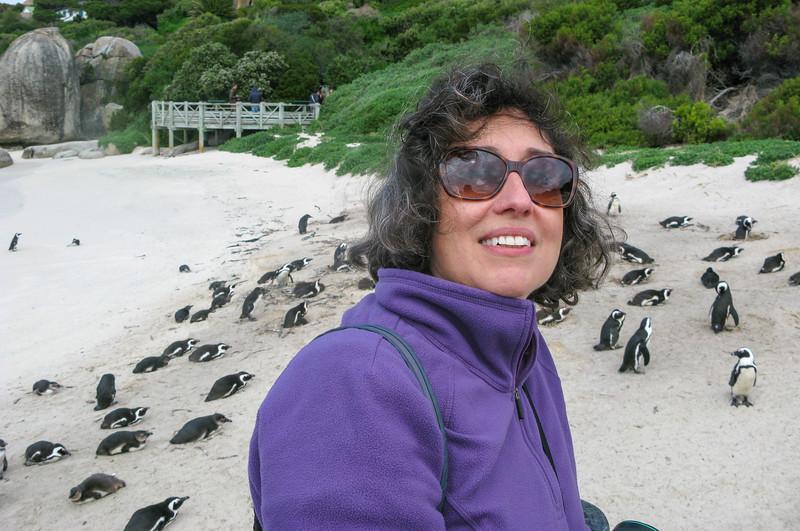 Penguins @ Boulders Beach