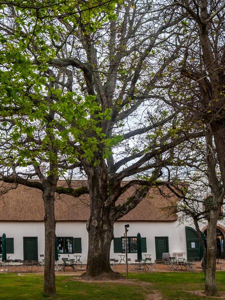 Groot Constantia, Jonkershuis Restaurant