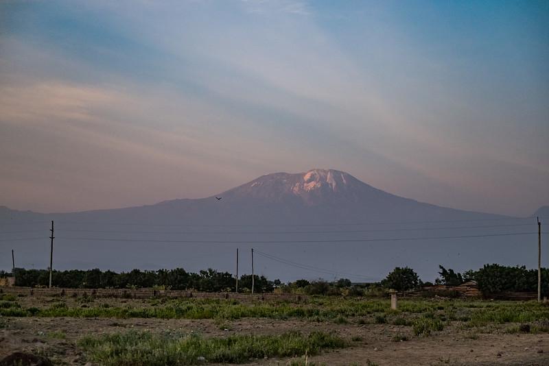 2015_07_27_safari_fuji_x_t1_030-71