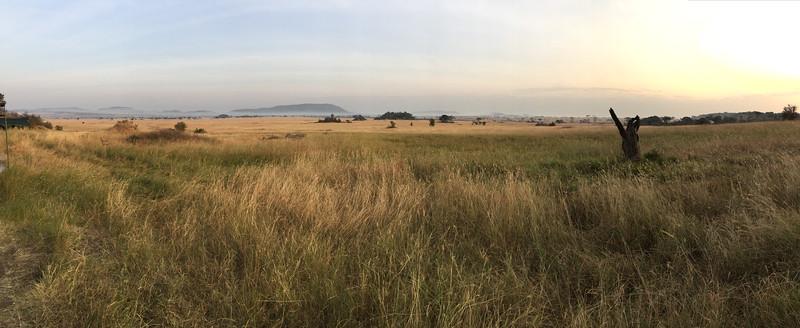 Dawn, Seregeti National Park