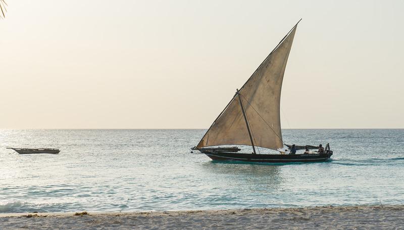 Dhow - Zanzibar at Sunset