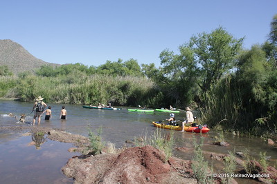 Visitors Float By - Salt River Arizona