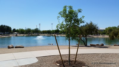 Lake Park Surprize Arizona