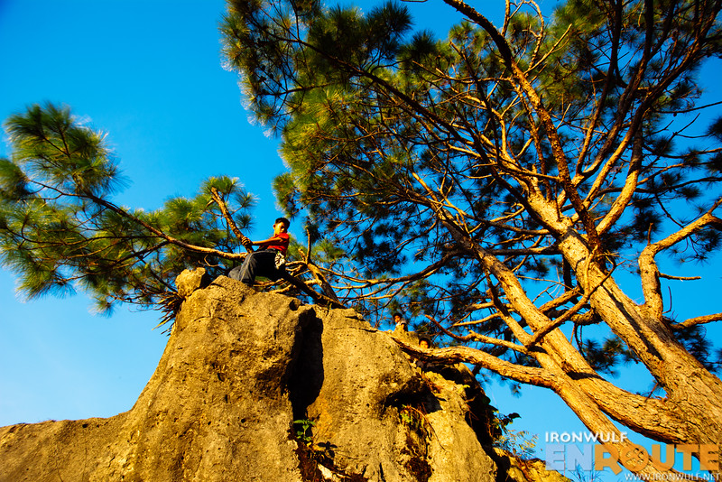 Our young porters climbing the rocks and the trees