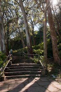 Hike to Nandi Hills, outside Bangalore.