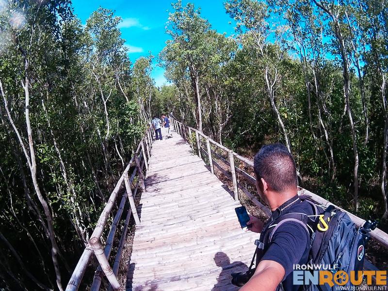 On the mangrove boardwalk at the Balanga Wetland and Nature Park