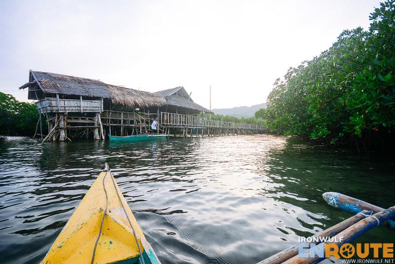 The mangrove jetty as we head back