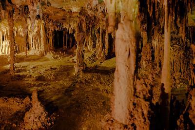 Cyprus Swamp area of Lehman Caves