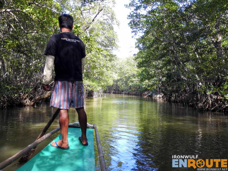 Mangrove cruise in Sibaltan