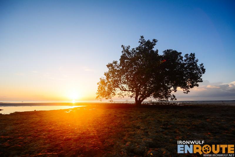 Catch the sunrise