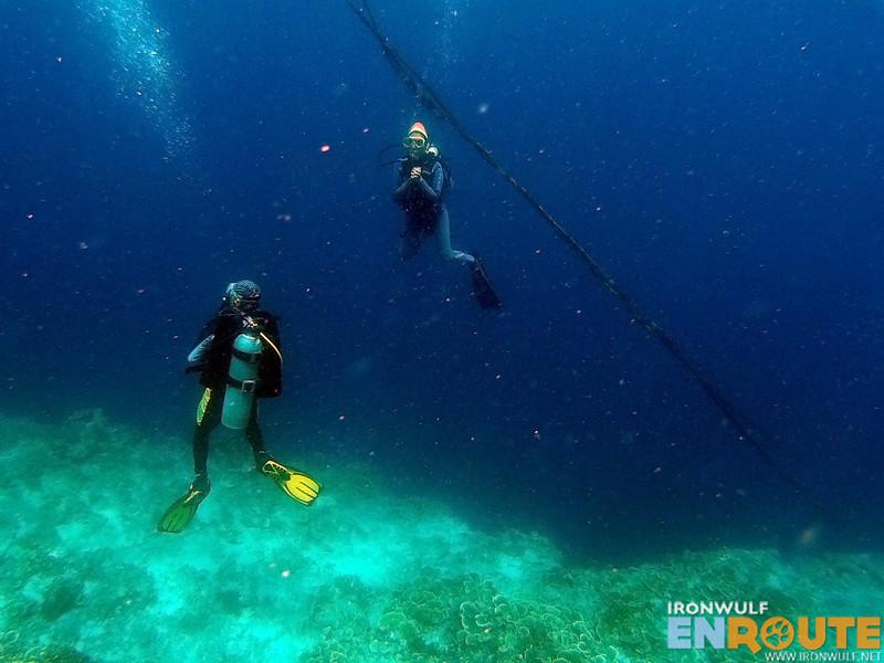Our diver friends at Pescador Island