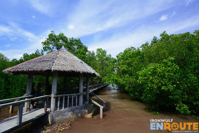 A gazebo amidst the mangrove and boardwalk