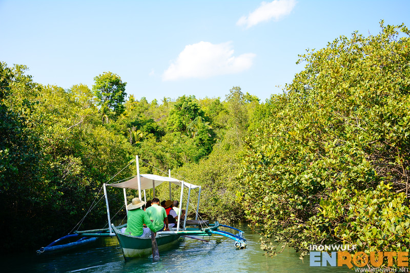 River riding through thick mangroves
