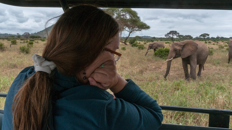 Pam enjoys watching the elephants; Tarangire National Park.
