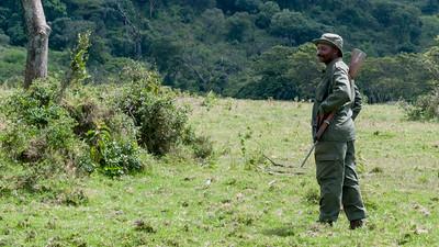An armed park ranger guides our hike - Arusha N.P., Tanzania.