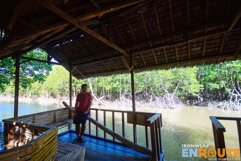A relaxing place among the mangroves