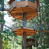 Unusual Hotels Around The World Out  About Treesort in Oregon